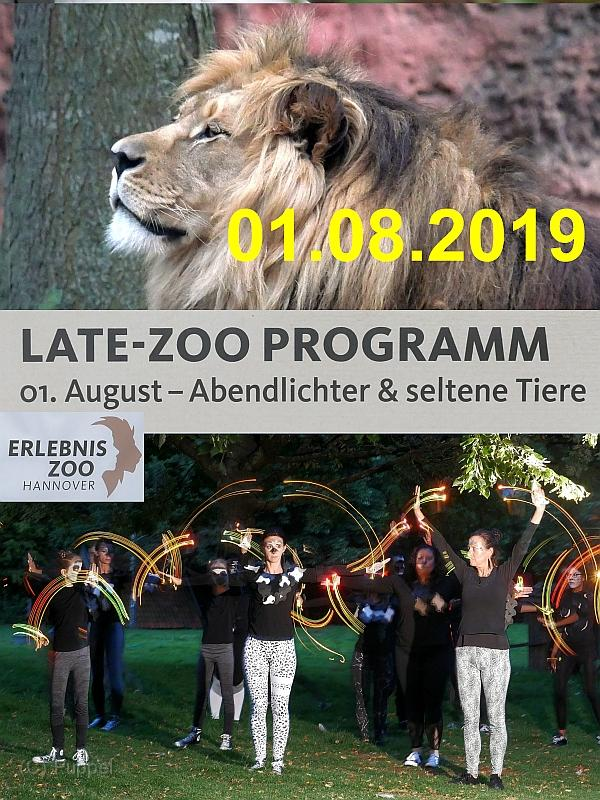2019/20190801 Late-Zoo/index.html